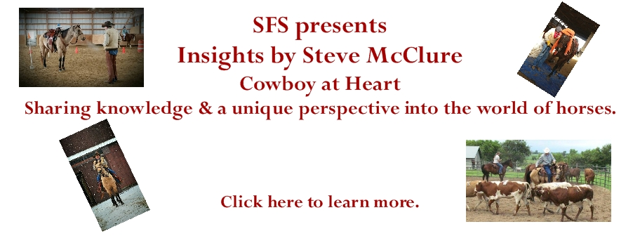 Read Insights by Steve McClure