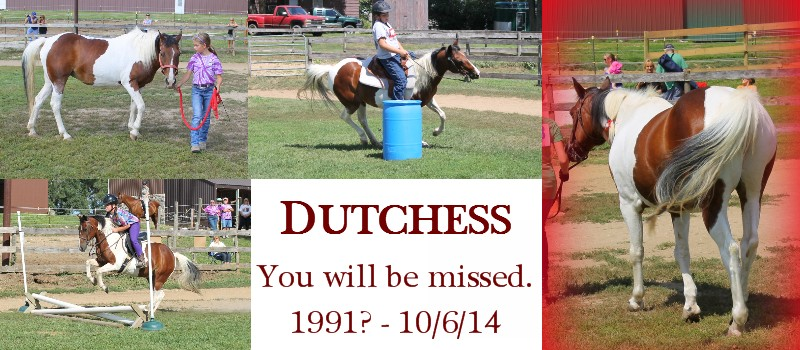 Remembering Dutchess